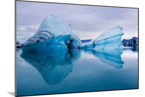 Ice Sculpture-Howard Ruby-Mounted Photographic Print