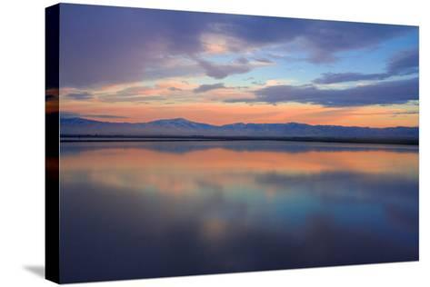 Watercolor II-Mark Geistweite-Stretched Canvas Print