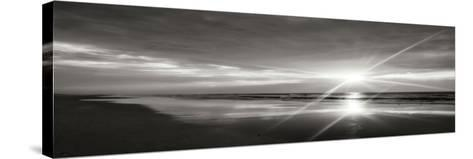 Beauteous Light Panel BW II-Alan Hausenflock-Stretched Canvas Print