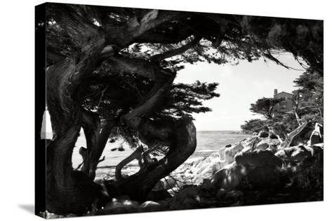 Ocean View I-Alan Hausenflock-Stretched Canvas Print