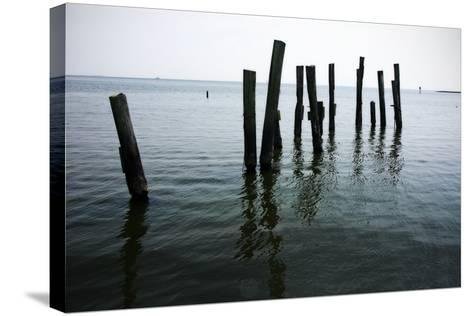 Pilings II-Alan Hausenflock-Stretched Canvas Print