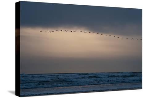 Oregon Coast Sunset 2-Erin Berzel-Stretched Canvas Print