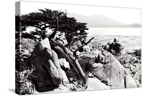 Ocean Cliff II-Alan Hausenflock-Stretched Canvas Print