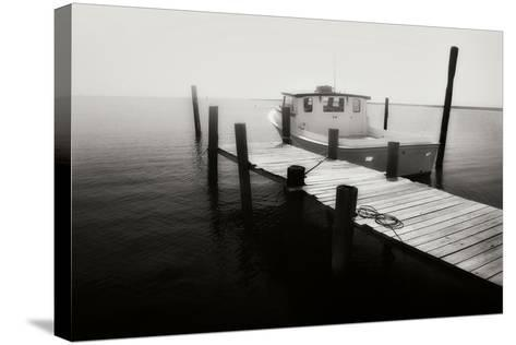 Waiting on the Fog I-Alan Hausenflock-Stretched Canvas Print