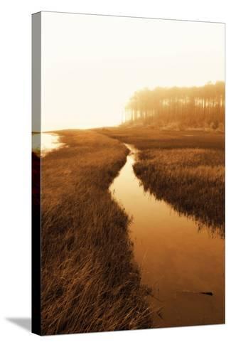 Harker's Island Marsh I-Alan Hausenflock-Stretched Canvas Print