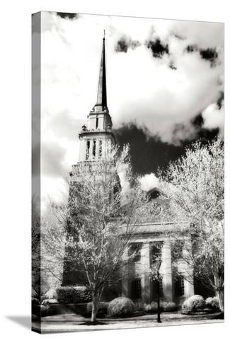 Renewal IV-Alan Hausenflock-Stretched Canvas Print