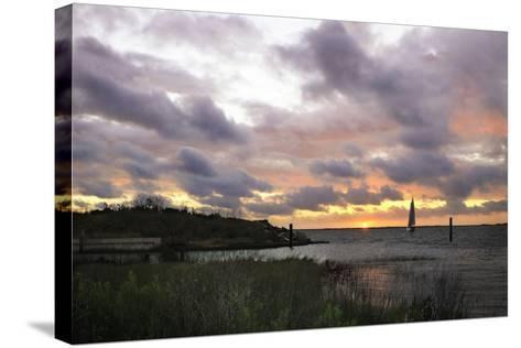 East Bay Sunrise I-Alan Hausenflock-Stretched Canvas Print