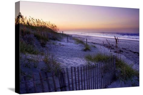 Lavender Beach II-Alan Hausenflock-Stretched Canvas Print