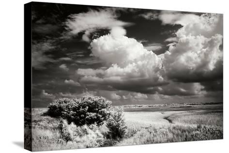 Everette Bay I-Alan Hausenflock-Stretched Canvas Print