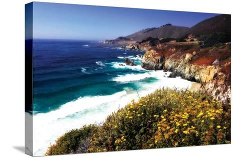 Garrapata Highlands 2-Alan Hausenflock-Stretched Canvas Print