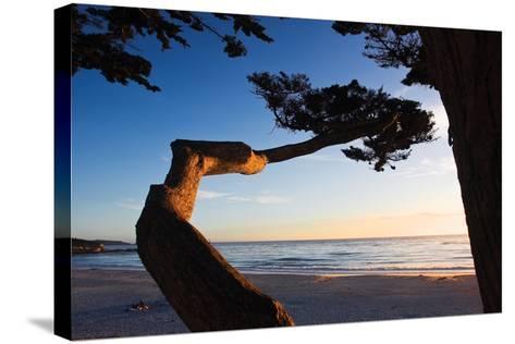 Carmel Sunset 1-Alan Hausenflock-Stretched Canvas Print