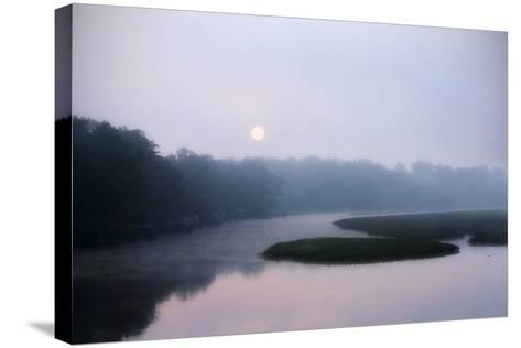 Fog on the Mattaponi 1-Alan Hausenflock-Stretched Canvas Print