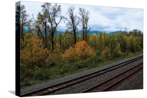 Union Pacific IV-Erin Berzel-Stretched Canvas Print