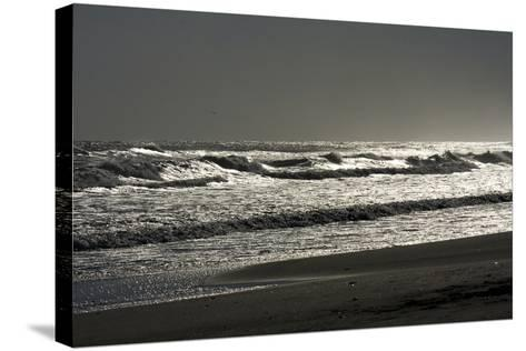 Silver Sea II-Alan Hausenflock-Stretched Canvas Print