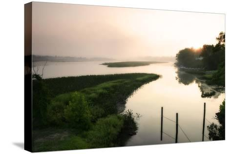 Fog on the Mattaponi 6-Alan Hausenflock-Stretched Canvas Print
