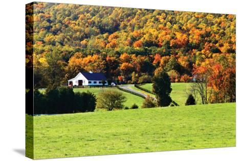 Mountain Farm 1-Alan Hausenflock-Stretched Canvas Print