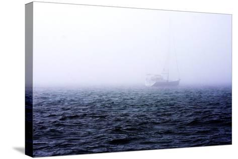 Fog on the Bay I-Alan Hausenflock-Stretched Canvas Print