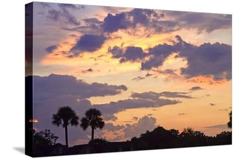 San Marcos Sunset 3-Alan Hausenflock-Stretched Canvas Print