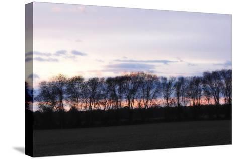 Winter Sunset 2-Alan Hausenflock-Stretched Canvas Print