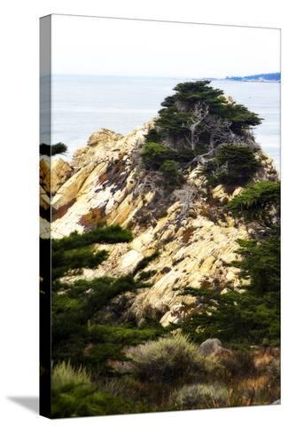 North Point 3-Alan Hausenflock-Stretched Canvas Print