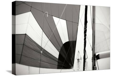 Downwind I-Alan Hausenflock-Stretched Canvas Print