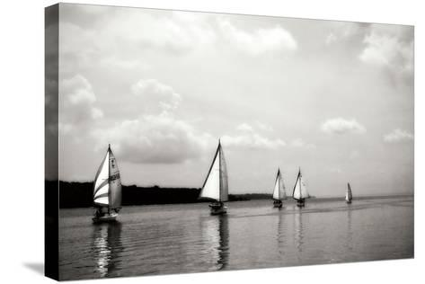 On the Potomac I-Alan Hausenflock-Stretched Canvas Print