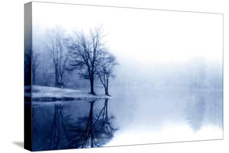 Fog on the Lake III-Alan Hausenflock-Stretched Canvas Print