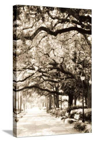 Savannah Sidewalk Sepia I-Alan Hausenflock-Stretched Canvas Print