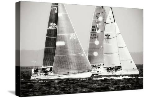 Race on the Chesapeake III-Alan Hausenflock-Stretched Canvas Print