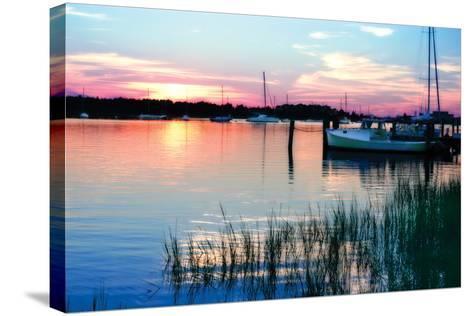Taylor's Creek Sunset-Alan Hausenflock-Stretched Canvas Print