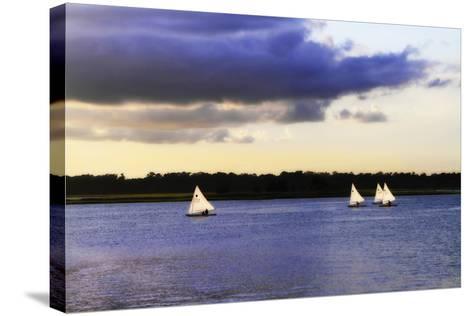 Sunfish Sailors I-Alan Hausenflock-Stretched Canvas Print