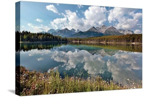 Herbert Lake-Larry Malvin-Stretched Canvas Print