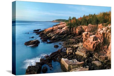 Acadia Coastline-Larry Malvin-Stretched Canvas Print
