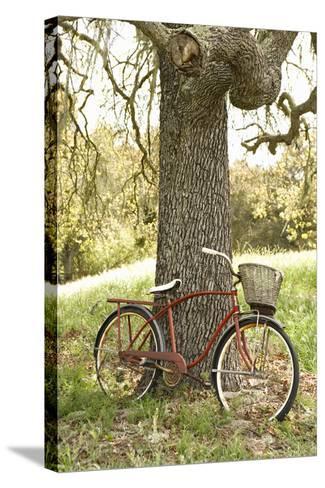 Go by Bike II-Karyn Millet-Stretched Canvas Print
