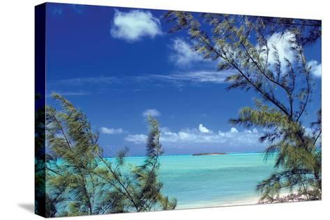 Pelican Cay-Larry Malvin-Stretched Canvas Print