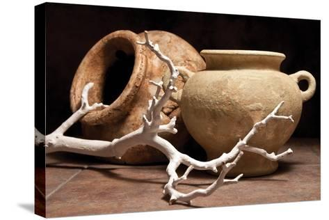 Pottery with Branch II-C^ McNemar-Stretched Canvas Print