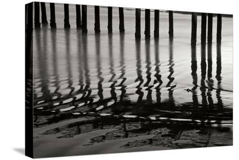 Pier Pilings 14-Lee Peterson-Stretched Canvas Print