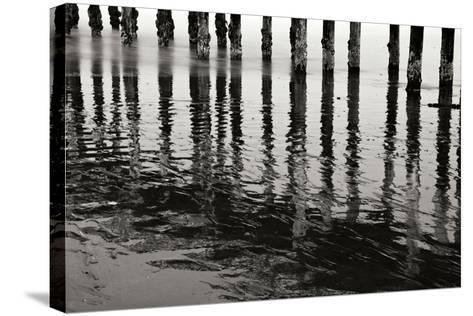 Pier Pilings 15-Lee Peterson-Stretched Canvas Print