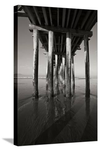 Pier Pilings 16-Lee Peterson-Stretched Canvas Print
