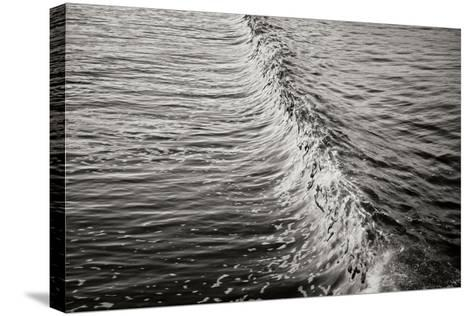 Wave 2-Lee Peterson-Stretched Canvas Print