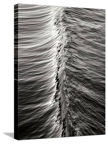 Wave 5-Lee Peterson-Stretched Canvas Print