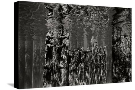 Pier Pilings 2-Lee Peterson-Stretched Canvas Print