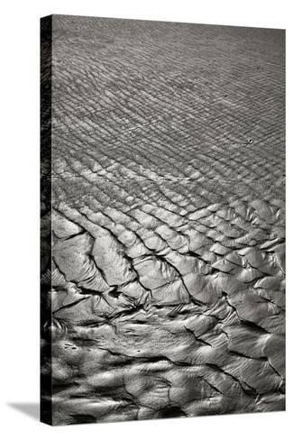 Texture Sand 4-Lee Peterson-Stretched Canvas Print