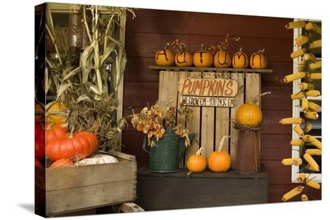Autumn Harvest III-Philip Clayton-thompson-Stretched Canvas Print