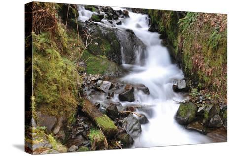 Stream Falls VII-Logan Thomas-Stretched Canvas Print