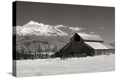 Mt. Shasta I-George Johnson-Stretched Canvas Print