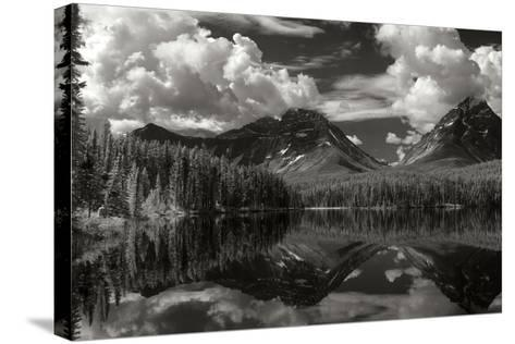 Leach Lake-George Johnson-Stretched Canvas Print