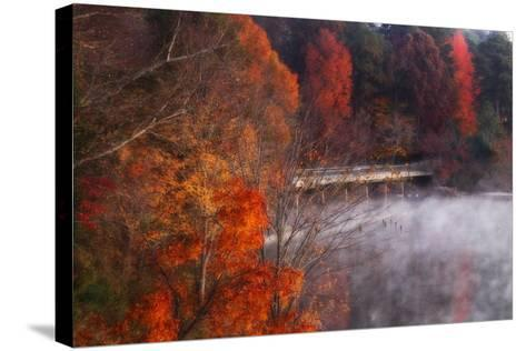 Cold Autumn Morning I-Alan Hausenflock-Stretched Canvas Print