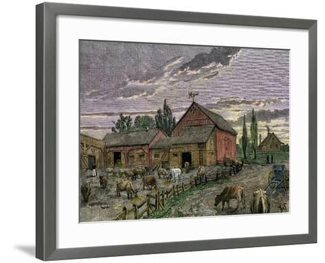 Cattle and Barns of a Canadian Homestead About 1850--Framed Art Print