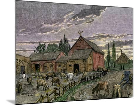 Cattle and Barns of a Canadian Homestead About 1850--Mounted Giclee Print